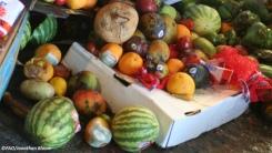 Desperdicio y pérdida de alimentos: el punto débil en la lucha contra el hambre